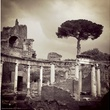 Theresa Escobedo, iPhone class, Houston Center for Photography, January 2013, Untitled (Villa Adriana)-1