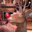 Rudolph the reindeer chocolate Hilton Americas 2014