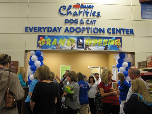 dallas animal services and petsmart open new everyday