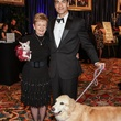 Diane Mattly and Dominic Cellitti at the Citizens for Animal Protection Gala November 2013