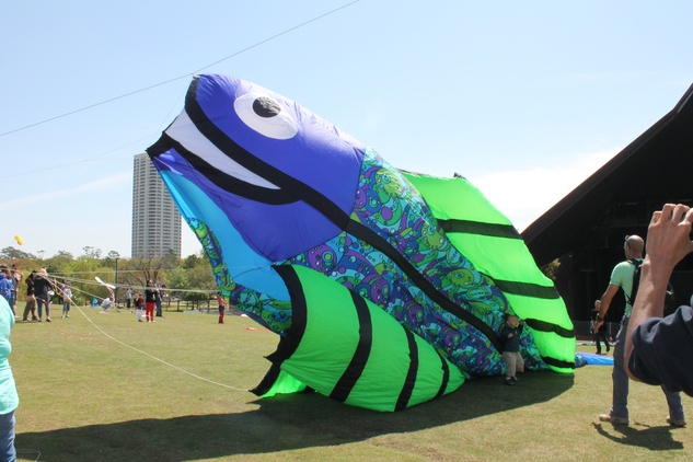 348 Hermann Park Kite Festival March 2014