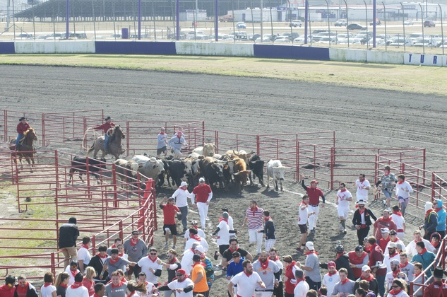 Great Bull Run 06