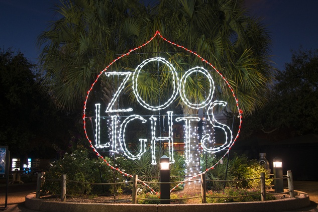 Houston Zoo lights November 2014