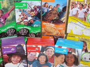 i hope your face hurts girl scouts still not afraid of