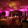 Beyond lighting at Ashton Gardens wedding