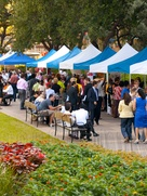 News_green Houston_City Hall Farmers Market_future