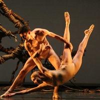 Austin Photo Set: News_Nancy Wozny_Ballet Austin to Houston_Dec 2011_1
