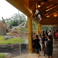 Houston Zoo gorillas YP Overview of Arrival Building