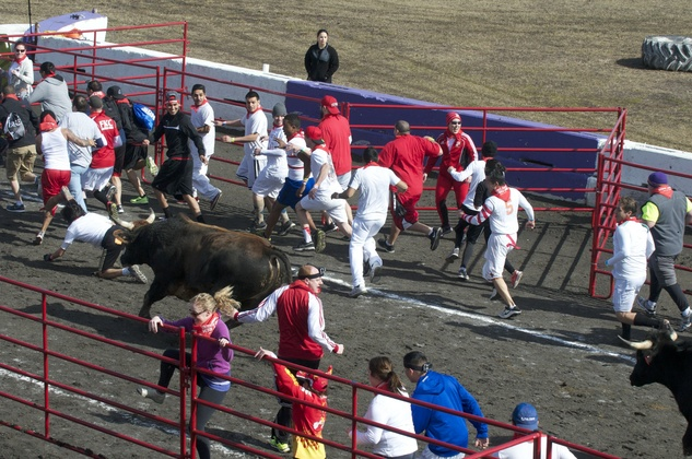 Great Bull Run 10