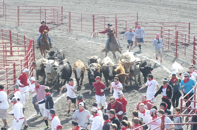 Great Bull Run 07