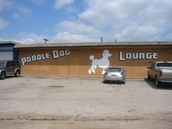 Austin Photo Set: Places_poodle dog lounge