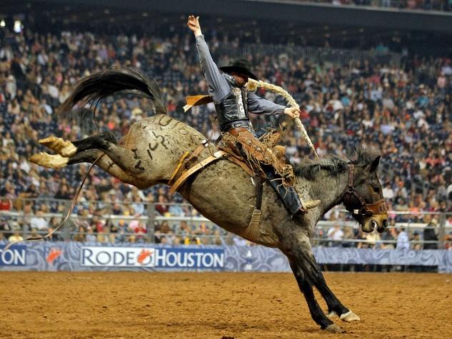 Houston Rodeo Earns A Walt Disney World Level Facebook