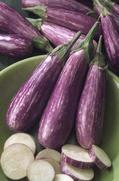 Eggplant at North Haven Gardens in Dallas