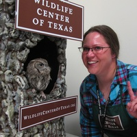 6. Eastern Screech Owl and volunteer, Christina Spade Katie Oxford Wildlife Center of Texas December 2014