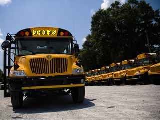 A fleet of school buses