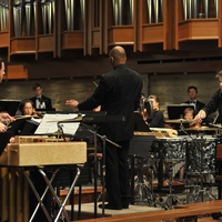River Oaks Chamber Orchestra Big Bang percussion concerto