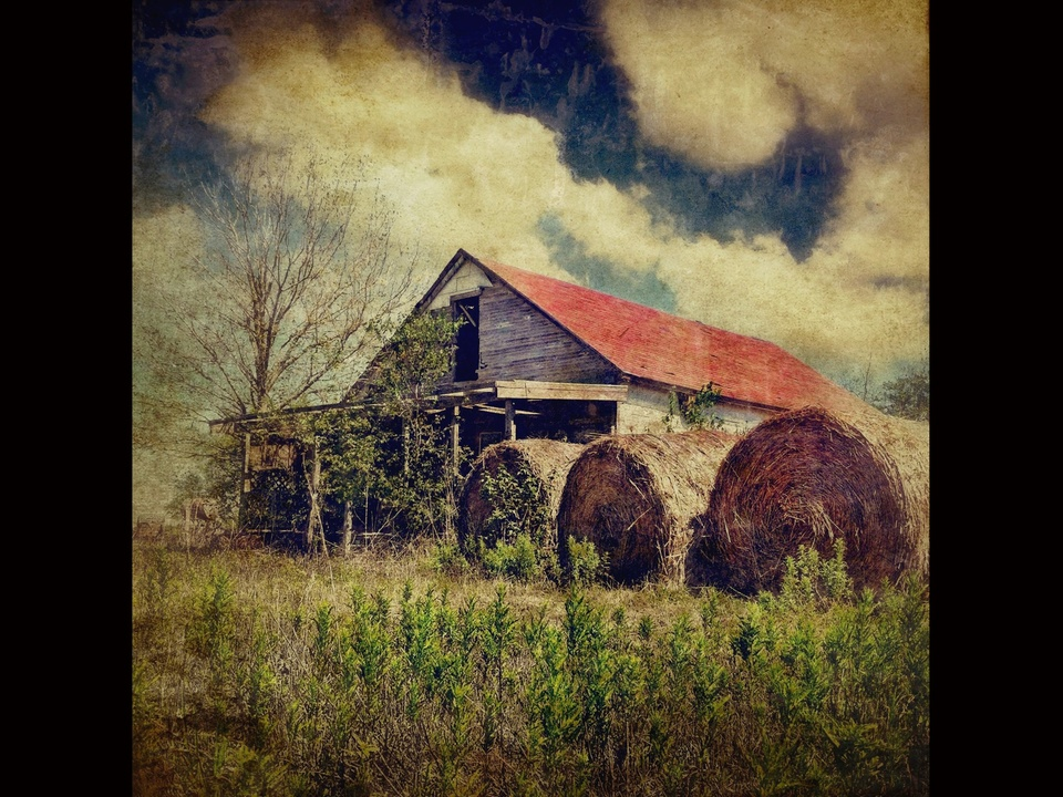 News_iPhone photography_Joey Garcia_hay bales