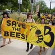 Photo of bee activists in parade