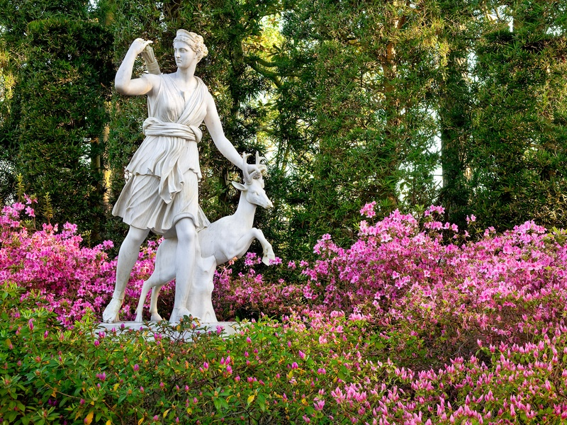 Slideshow Cultivating The Garden Without Bayou Bend