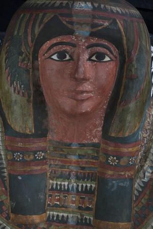 Houston Museum Of Natural Science Mummy Exhibit