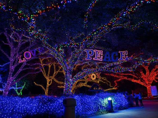 Best Holiday Lights Contest Features Houston Area Faves: Vote Now    CultureMap Houston Gallery