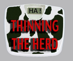 Austin Photo: News_Mike_Thinning the Herd_Logo