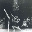 Houston Ballet Swan Lake 1976, Act III Andrea Vodehnal and Whit Haworth