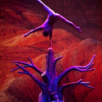 Chi of Shaolin: The Tale of the Dragon