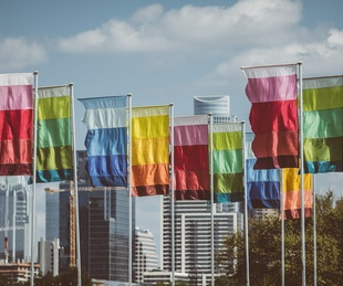 Austin City Limits Festival ACL Fest 2017 Weekend 1 Flags