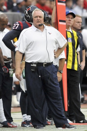 Wade Phillips Texans sideline
