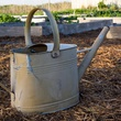 Watering can with garden mulch
