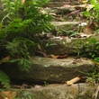 Stephan Lorenz, Tayrona National Park Columbia, July 2012, Stairway to Nowhere Pueblito Ruins Tayrona National Park