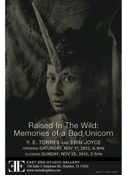 Art opening reception: Raised in the Wild: Memories of a Bad Unicorn