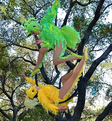 "The ""Feathers in Flight"" aerialist show"