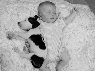 Baby naps with puppy
