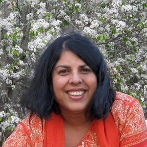 a review of chitra banerjee divakarunis novel Chitra banerjee divakaruni, author anchor books $1495 (320p) isbn 978-0-385-48350-6 poet divakaruni, who was born in india and now teaches in america, makes her fiction debut with 11 stories.