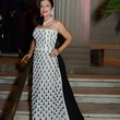 News_Shelby_MFAH Grand Gala ball gowns_Dancie Ware_October 2013