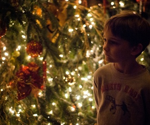 Austin Photo Set: News_Jon Shapley_driskill Christmas tree_Dec 2011_7