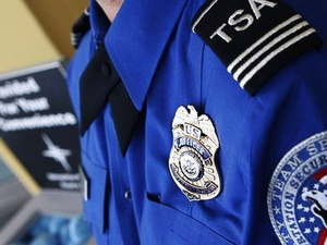 TSA theft, badge, airport officer