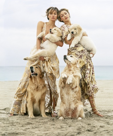 Vogue spring fashion layout featuring dogs