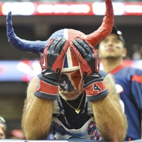 Distraught Texans fan