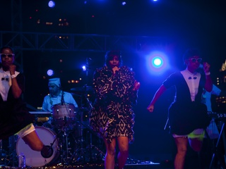 Austin Photo Set: News_dan_fff_santigold_nov 2012_2