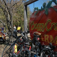 Austin Photo Set: News_Tavaner sullivan_Farm Bike tour_Preview_Dec 2011_boggy creek