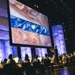 7 Houston Symphony 100th Anniversary Concert June 2013 at Miller Outdoor Theater